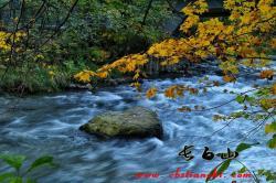 秋风习习,九月长白山已经超级凉爽了!!