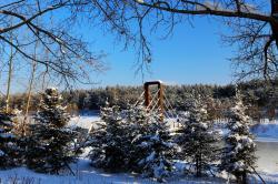 雪后,漫景长白山池北区!!