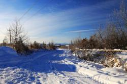 雪后,漫景冬季童话世界里的池北区!