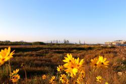 清晨漫景长白山池北区(9.17)